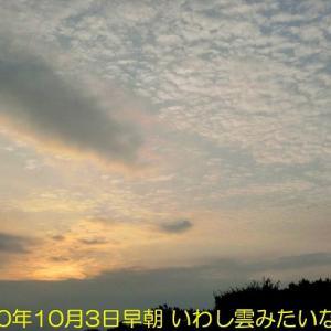 綺麗な「いわし雲」みたいな雲が出ていました