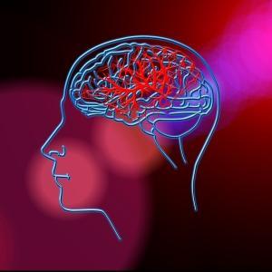 【嘘?本当?】頭皮の血行促進には本当に育毛効果があるのか?