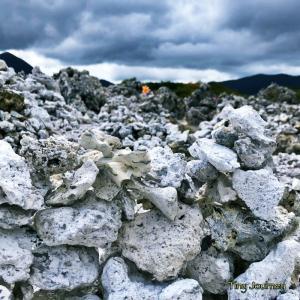 恐山界隈の白と黄色の世界