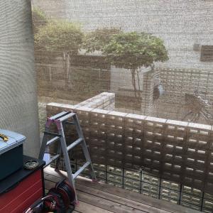 台風過ぎてデッキの掃除 #150
