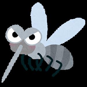 電気を消すと蚊が耳元に「プ〜ン」と飛んで来る理由は?