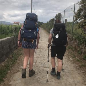 【4日目】カミーノ日記。朝靄の田園風景、ヤギのおさんぽ、マメだらけのスイス人女子、美しい橋の街ポンテ・デ・リマ。