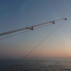 6月21日 淡路島のキス釣り ~良型に拘ってるつもりですが...