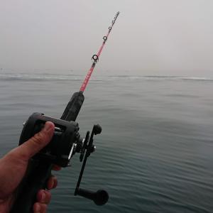 6月6日 明石に蛸釣り行きました ~投釣りとはちゃいまっせ