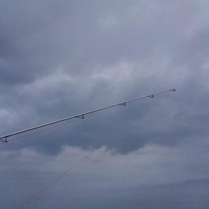 7月5日 淡路島のキス釣り ~海藻強し・・・なんで惨敗しました