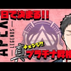 【Apex Legends】真・プラチナ昇格祝勝会予定地 改【にじさんじ/社築】