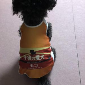 【★コエタス当選★】午後の愛犬★タンクトップ