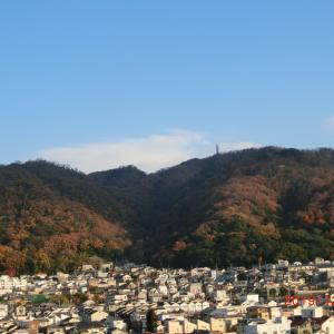 生駒山の紅葉 その5