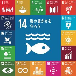 SDGs特化事業で船上入札システムを導入