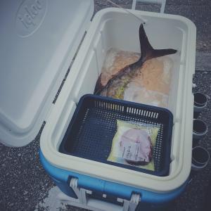 クーラーボックス内で食料が水没する問題