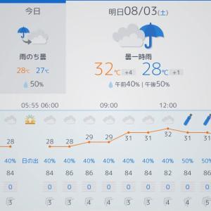 8月1週目:今週は釣りお休み・台風発生