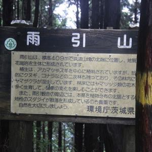 近県の登山情報:アジサイ祭りの雨引観音と雨引山