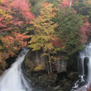栃木の情報:栃木県民割「県民一家族一旅行」再開