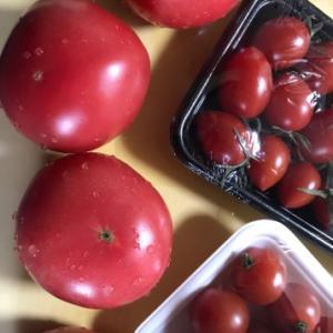 200410 手作りトマトソース