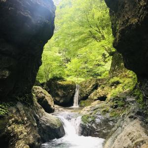 【東京の隠れたパワースポット】神戸岩&払沢の滝を探索してみた