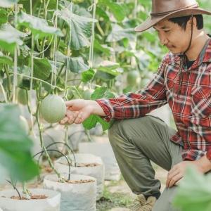 宅建の農地法 ~法令上の制限「農地法」について