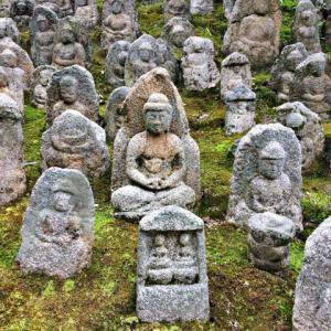 『坐禅三昧経』12「第三 愚痴を治するの法門」