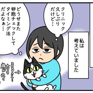 【人工授精①】人工授精にチャレンジしたい…!