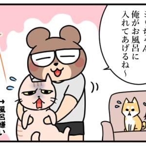【猫】お風呂に入れる時、背後を取られてはいけない