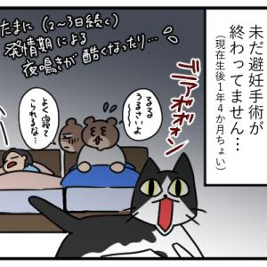 【猫】るるの皮膚炎と夜鳴き