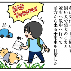 犬の散歩中のハプニング_1