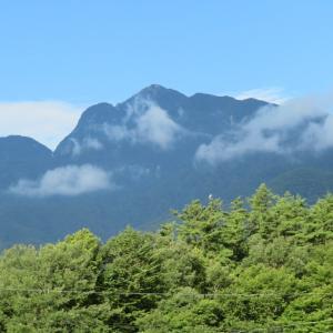 山の家 8月 ②朝のお山、鳥、虫、煙突など