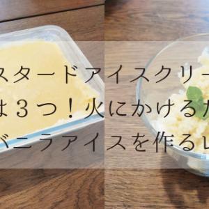 【カスタードアイスクリーム】材料は3つ!火にかけるだけ!【簡単バニラアイスを作るレシピ】