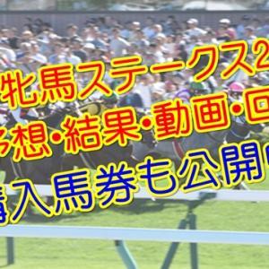 府中牝馬ステークス2019 単勝・複勝予想・動画・結果・回顧 【馬券公開】