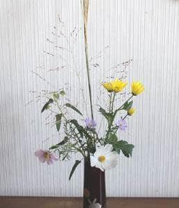 2020124神無月③の花