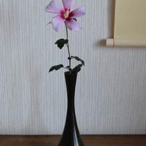 20210923文月②木の花