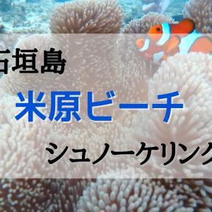 【石垣島】米原ビーチでシュノーケリング!無料駐車場に停める方法も紹介します!シャワーや更衣室も完備!