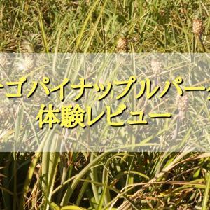 【レビュー】ナゴパイナップルパークに行ってきた!感想、お土産、クーポン等を紹介!