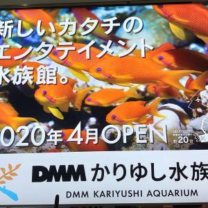 【沖縄】DMMかりゆし水族館周辺の観光スポット8選!ビーチからショッピングまで!
