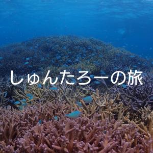 阿嘉島にコインロッカーはある?【さんごゆんたく館】