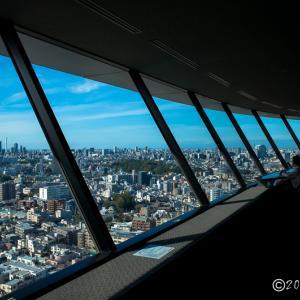 文京シビックセンター ~展望