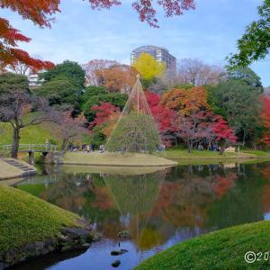 小石川後楽園 ~紅葉