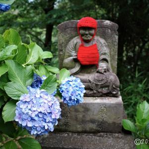 高幡不動尊 ~紫陽花の咲く山内八十八ヶ所巡り