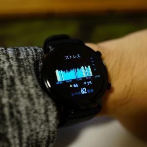 Huawei watch gt2 42mm 使用されている素材まとめ & 誤字を見つけた話