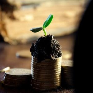 高配当でも無配でも、資産が増えればいい
