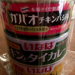 グリーンカレーの缶詰を頂きました