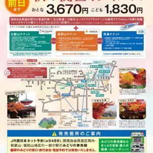 アクアライナーとパンケーキ〜秋の関西1デイパスの旅①〜