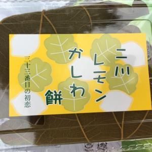 骨密度とレモン柏餅〜さわやかウォーキング新所原②〜