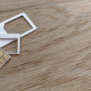 格安SIMのランキング 格安SIMを駆使していくなら