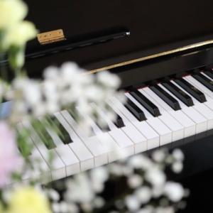 杉浦みずきの年齢や経歴は?彼氏や大学・出身高校も調査!TEPPEN20芸能人ピアノ頂上決戦1月25日放送