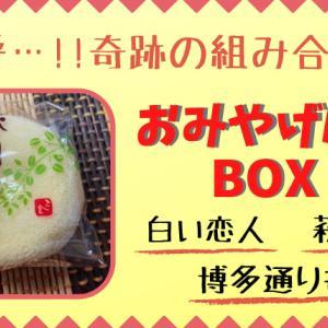 おみやげんきBOXはいつからいつまで買える?値段や通販購入方法も調査!