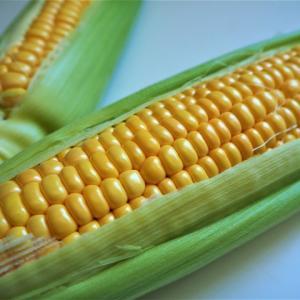 トウモロコシって意外に知られていない栄養価が!嬉しい効果効能も!