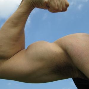 自宅トレーニングの救世主!BodyBoss0.2がすごい!