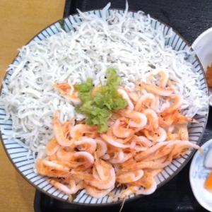 EV静岡旅行二日目 e-NV200で桜えび食べて日本平見て御殿場でビール買って