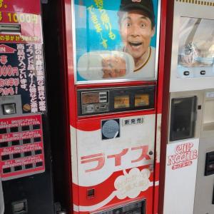 日本三大秘境で葛を渡る 四国一周EV旅#10