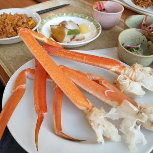 これぞ北海道!プール付きホテルでカニ食べ放題 北海道EV旅in2020 #8